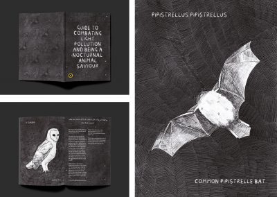 """A booklet mock-up titled """"Guide to Combating Light Pollution and Being a Nocturnal Animal Saviour"""", including illustrations of nocturnal animals."""