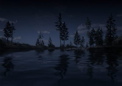 A line of trees, barely illuminated by moonlight, stand at the very edge of a lake and cast ghostly reflections into the rippling water.