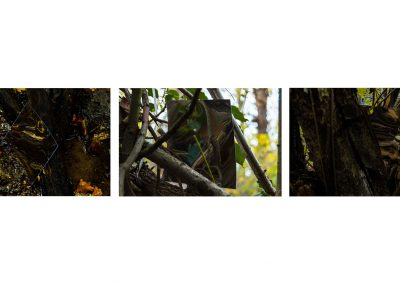 A series of three photographs involving a distorted mirror placed within an area of a woodland in autumn. Left: a photograph of a mirror leaning against a piece of wood in a stream. The reflection in the mirror is distorted. Middle: a photograph of a mirror balanced in a tree, distant background is out of focus (blurred). Right: a photograph of a mirror leaning on a tree branch, the mirrors reflection is distorted as it reflects the bark of the tree.
