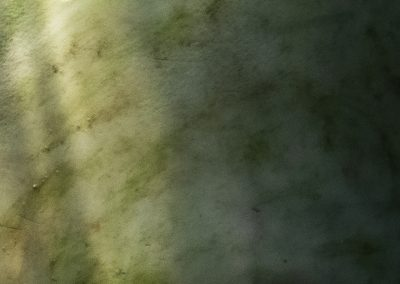 A creamy background with streaks of green and brown