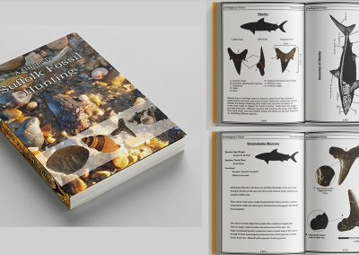 Mock up of A Guide To Suffolk Fossil Hunting Identification pocket book A5