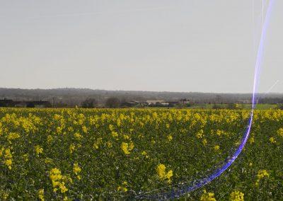 Yellow flower field landscape with dark blue coloured spark overlay